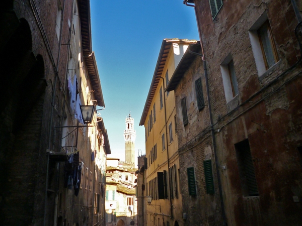 Sienne (Toscane, Italie), via Giovanni Duprè, 13 novembre 2010