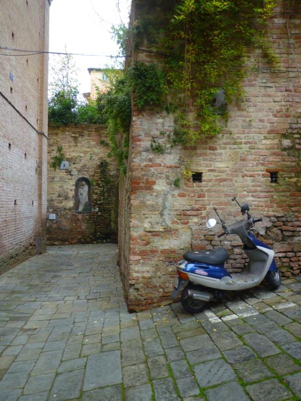Sienne (Toscane, Italie), 14 novembre 2010