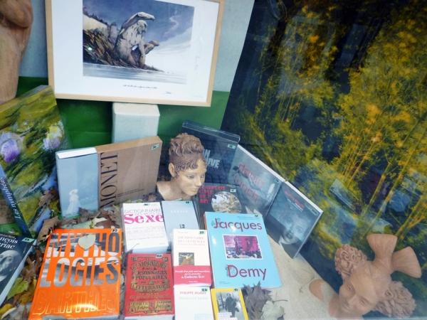 Toulouse, vitrine de la librairie Ombres blanches, 12 décembre 2010