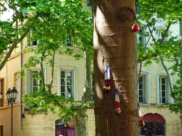 Place de La Canourgue, Montpellier, 8 mai 2011