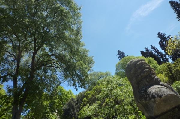 Montpellier, Jardin botanique, 1er mai 2012