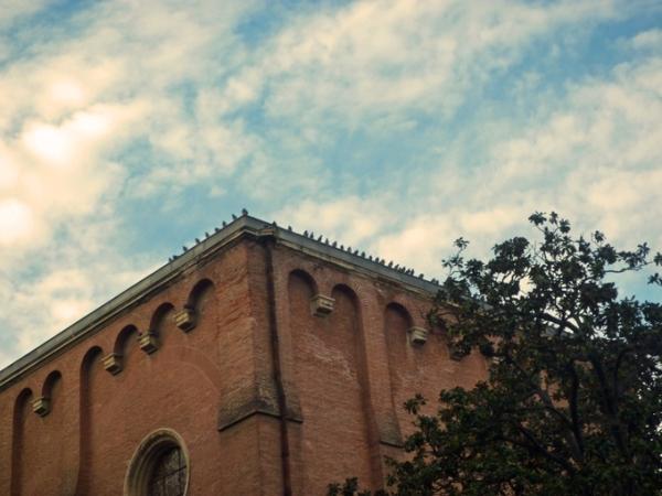 Musée des Augustins, Toulouse, 16 décembre 2012