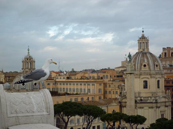 Rome (Italie). Terrasses du monument à Victor Emmanuel II, 26 décembre 2012
