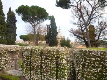 Rome (Italie). Vue prise depuis le Capitole, 26 décembre 2012