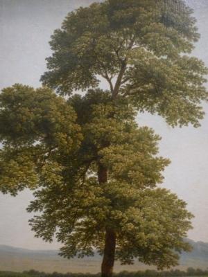 Louis Gauffier (Poitiers 1762 - Florence 1801) | Étude d'arbre au bord du Tibre (vers 1790-1793), détail. Musée Fabre, Montpellier (France)