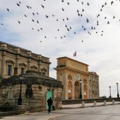 Montpellier (Occitanie, France), 18 février 2018