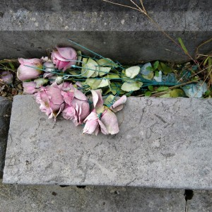 Cimetière de Saint-Girons (Ariège, Occitanie, France), 31 octobre 2018