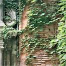 Toulouse (Occitanie, France), cour d'un immeuble, rue de la Pomme
