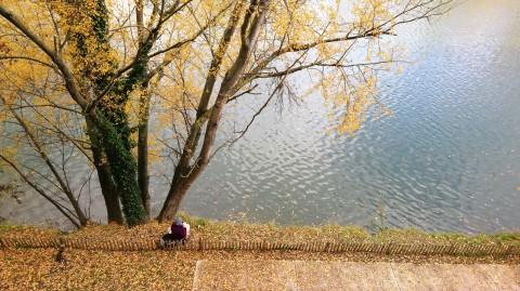 Toulouse (Occitanie, France), la Garonne depuis la rue de la Digue, 29 novembre 2019