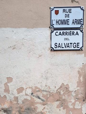 Toulouse (Occitanie, France), Rue de l'homme armé = Carrièra del salvatge, 27 octobre 2020