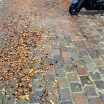 Toulouse (Occitanie, France), place Mage = plaça Màger dels Afachadors, 28 octobre 2020