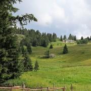 Passo Vezzena (Levico Terme, TR, Italia) = col Vezzena (Levico Terme, Trentin, Italie), 4 juillet 2021